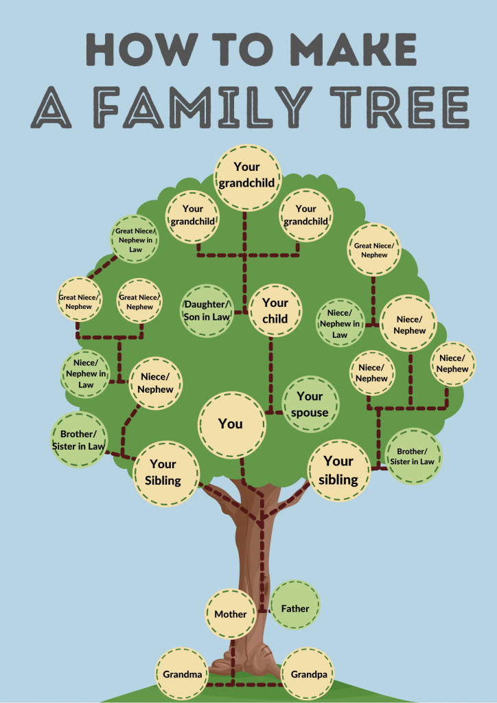 This image has an empty alt attribute; its file name is Edited-FamilyTree-1-724x1024.png